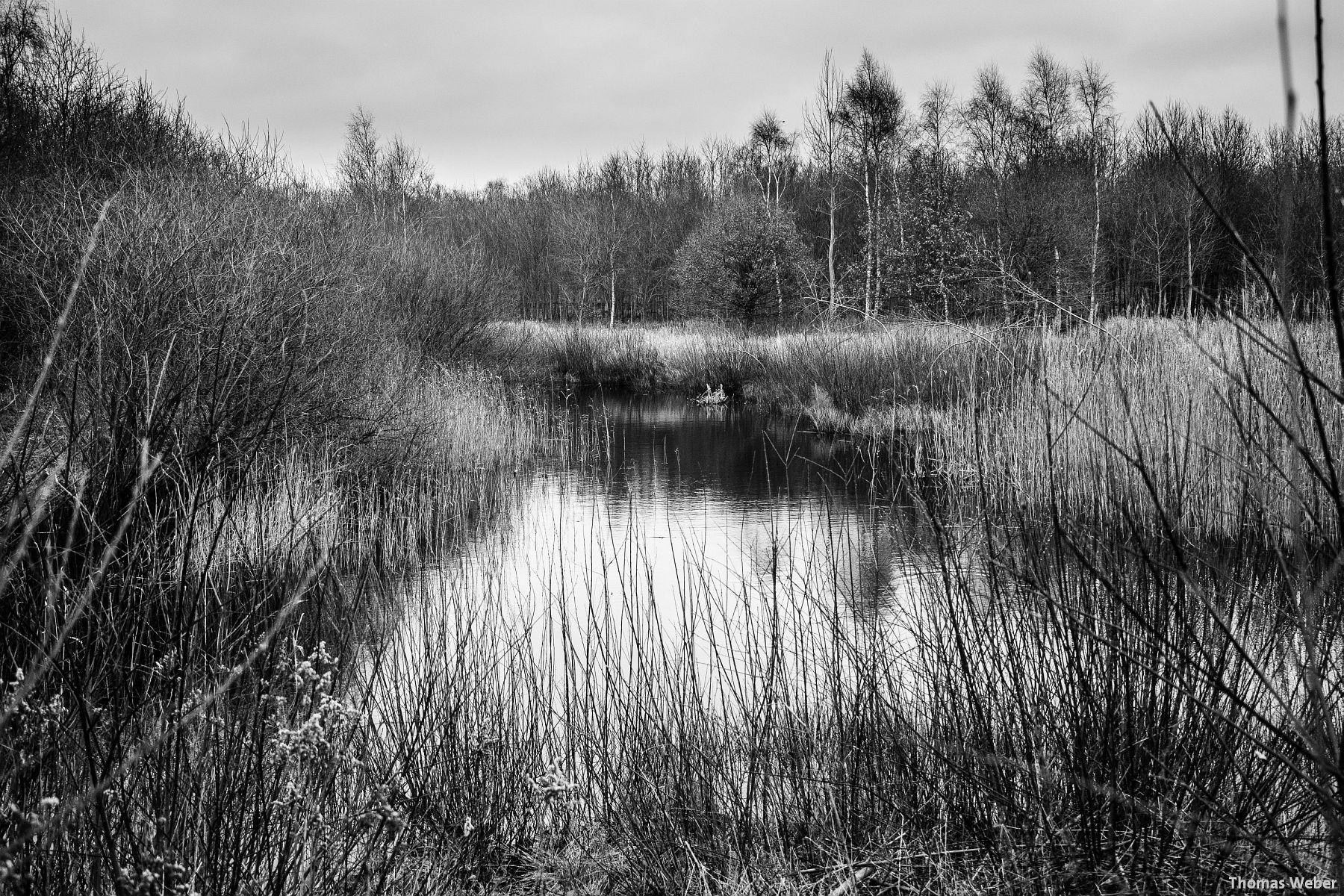 Fotograf Thomas Weber aus Oldenburg: Herbstlandschaft in Oldenburg