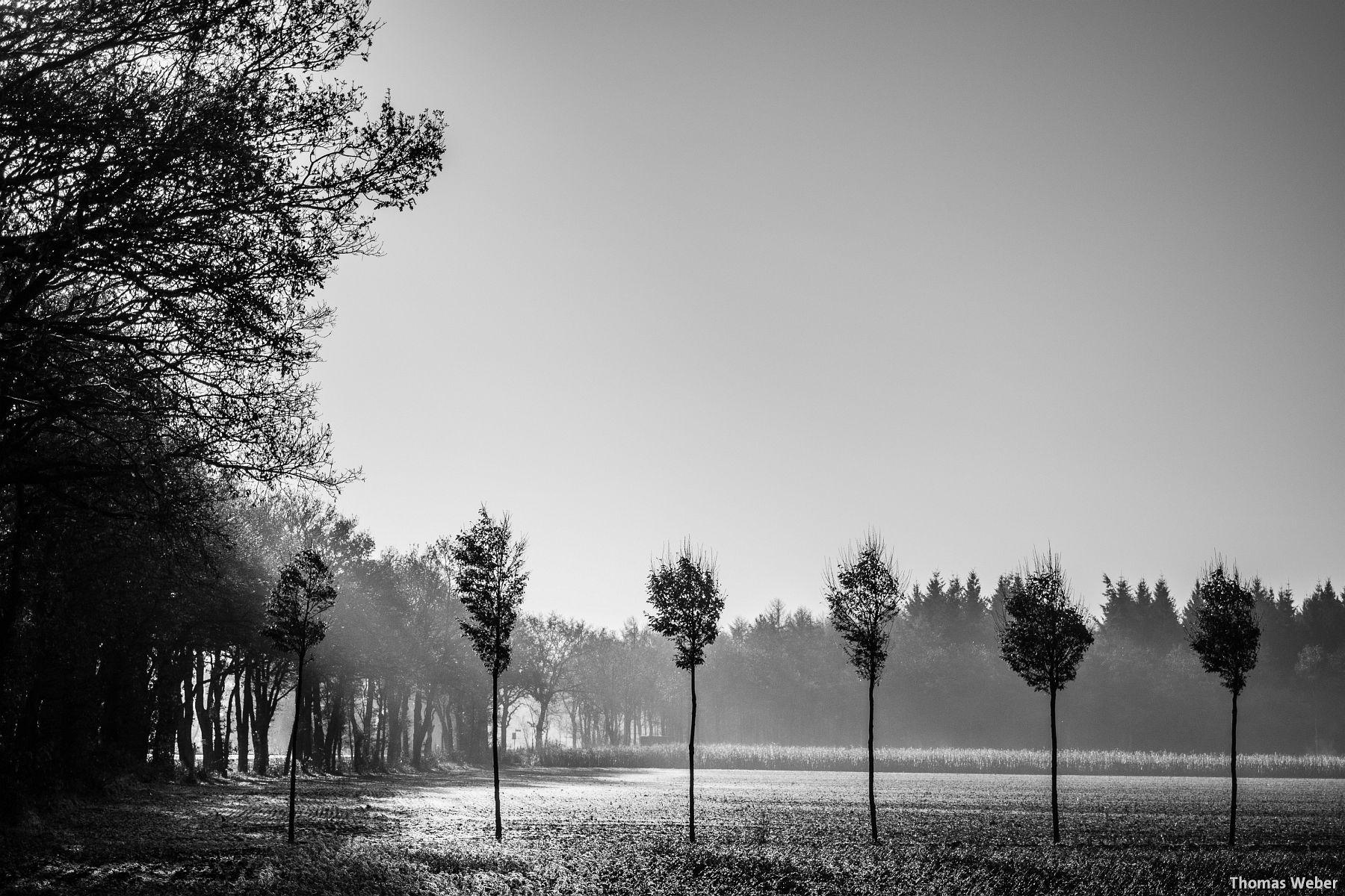 Fotograf Thomas Weber aus Oldenburg: Herbstlandschaft in Wardenburg