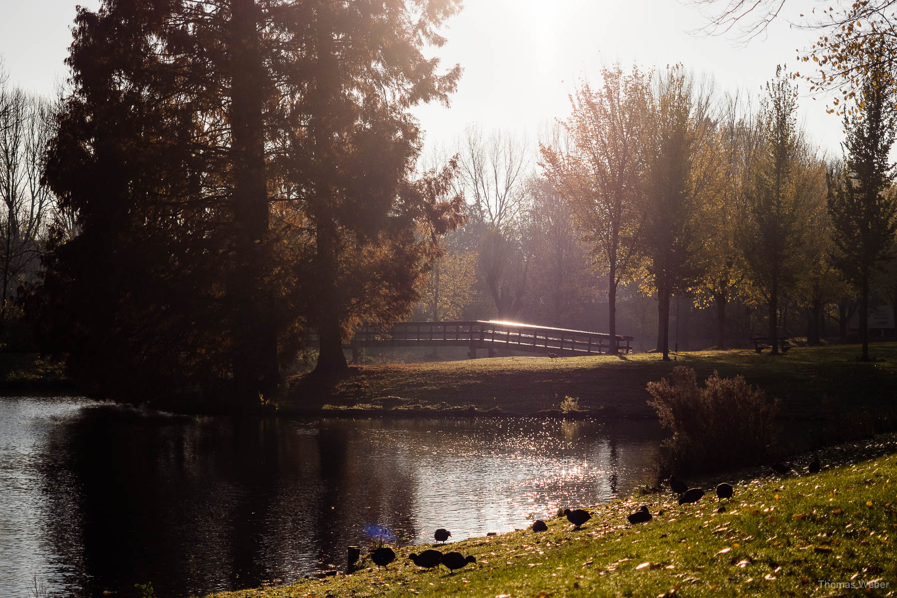 Der Stadspark in Groningen bei einer Fahrradtour durch Groningen, Fotograf Oldenburg, Thomas Weber