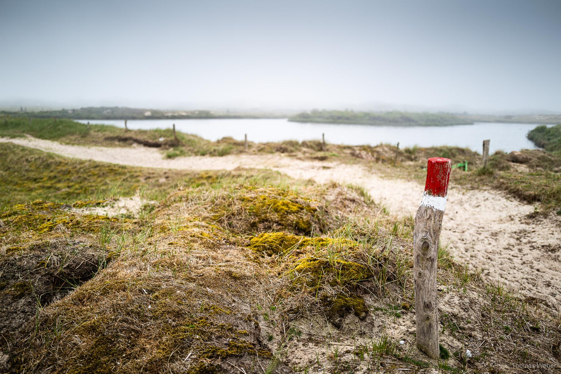 Filmdreh für Altano Pferdekliniken auf Norderney, Steffen Löffler und Thomas Weber